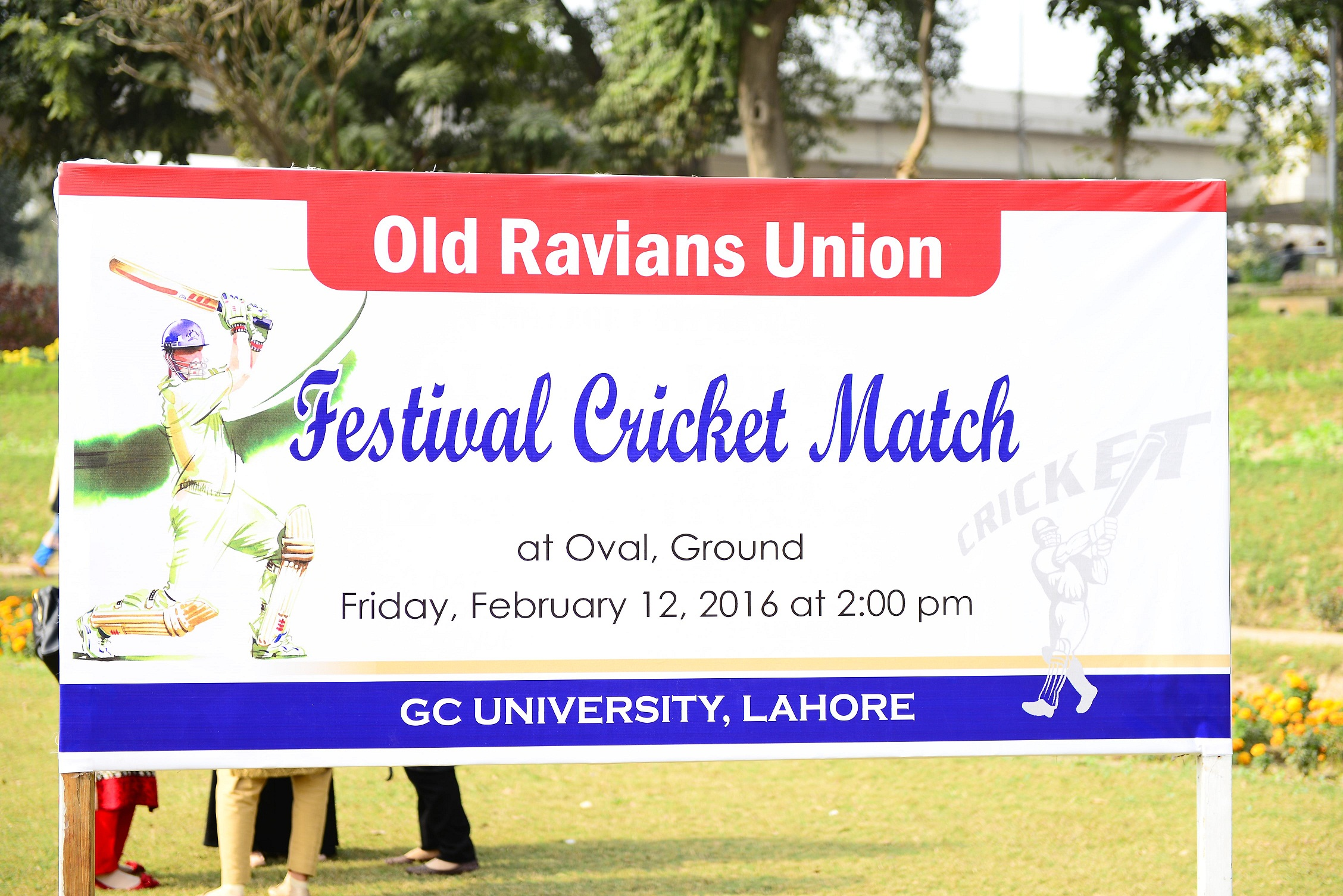 Festival Cricket Match 2016
